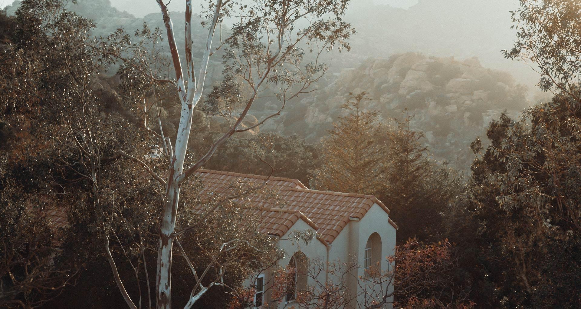 Haus von Gangaji in Kalifornien, Wald